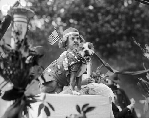 Sergeant Stubby, the official mascot of the 102nd Infantry Regiment, and the most decorated war dog of World War 1.